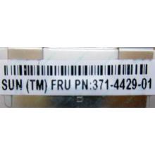 Серверная память SUN (FRU PN 371-4429-01) 4096Mb (4Gb) DDR3 ECC в Чите, память для сервера SUN FRU P/N 371-4429-01 (Чита)