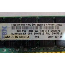 IBM 39M5811 39M5812 2Gb (2048Mb) DDR2 ECC Reg memory (Чита)