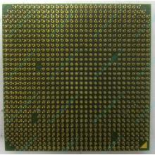 Процессор AMD Sempron 3000+ (1.6GHz) SDA3000IAA3CN s.AM2 (Чита)